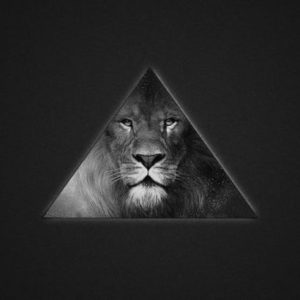 sexual shadow face of lion behind triangle shape